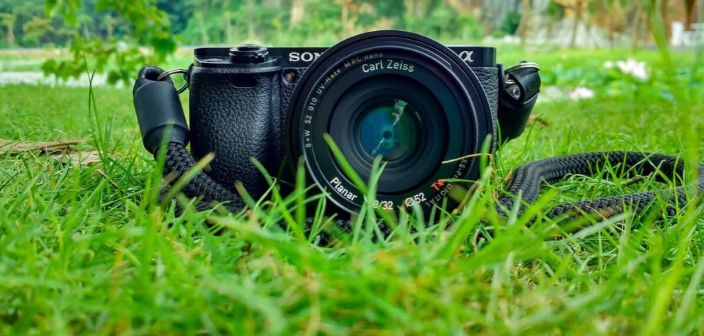 Camera on grass field